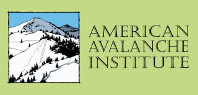 AAI – Online Avalanche Education